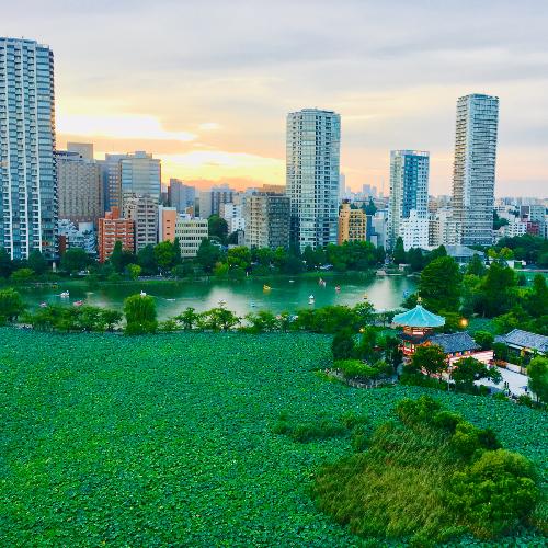 【レイク&シティビュー素泊まり】お部屋から不忍池を一望♪ ■京成上野駅から徒歩1分■