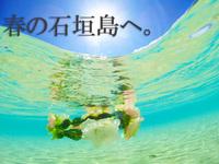 【2月〜6月限定】お得にシンプルステイ♪(素泊まりプラン)