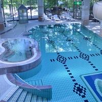 【楽天スーパーSALE】5%OFF朝夕の2食付きプランで那須高原を満喫!夜は露天風呂でのんびり