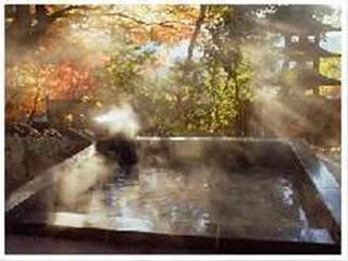 かけ流し名湯で山口を満喫プラン  Wi-Fi無料♪