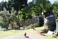 小さな村の小さな宿♪京都・丹波の古民家の囲炉裏端でほっこり♪一棟を一組だけで【1泊2食付】プラン