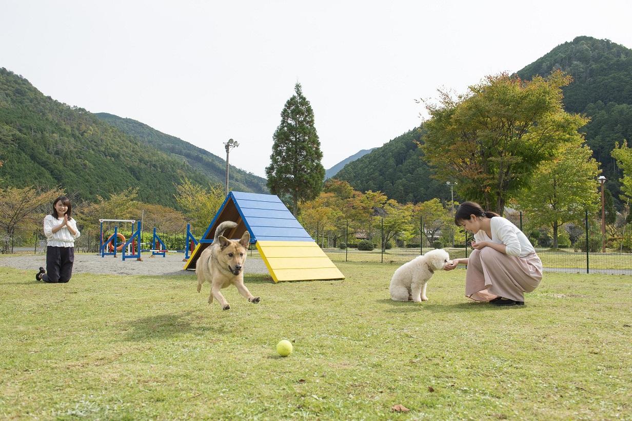 松阪わんわんパラダイス 森のホテルスメール 関連画像 9枚目 楽天トラベル提供