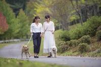 【1日3組限定】伊勢海老漁解禁!!伊勢海老づくし懐石プラン
