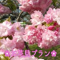 【お花見プラン】女性専用寝室フロア♪特典付き人吉のお花見スポットを満喫!