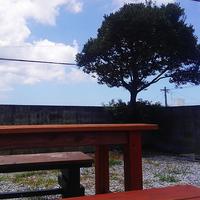 【新春の沖縄】うみかぜ STAY 大度浜海岸 STAYでひとあし、お咲きに。 暮らす旅■素泊まり