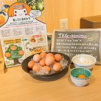 【65歳以上限定】熊野の四季会席『夕凪』の2食付☆シニア限定特別プラン
