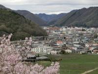 【春の季節限定】ゆったりと春を満喫。お花見プラン♪コーヒー&アロマ付き