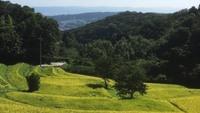 <無料観光ガイド付>ぶらり奈良の一人旅!生駒の魅力と歴史をご案内♪ハイキングプラン(朝食付)