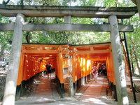◆GW◆ ゴールデンウイークを京都で過ごそう!【禁煙】