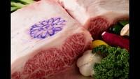 【神戸牛シャトーブリアン&鮮魚】超豪華!厳選された神戸ビーフの鉄板焼ディナーコース付プラン(朝食付)