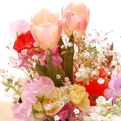 【記念日A】いろいろなお祝いシーンに!お花+ホールケーキ「素敵なアニバーサリー♪記念日プラン」