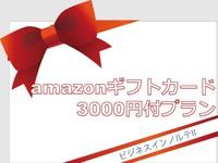 アマゾンギフト券3000円付プラン