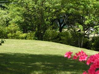 「期間限定5月連休専用」天然海老と和牛フィレ・スイートルームと旬を味わう西洋料理 ☆八ヶ岳の休日☆