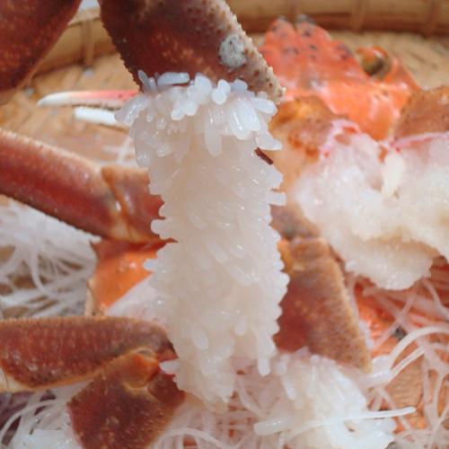 【冬★加賀の味覚旅~加能ガニ夕食のみ~】蟹フルコースの翌朝はいつも満腹で朝食が入らない方に!
