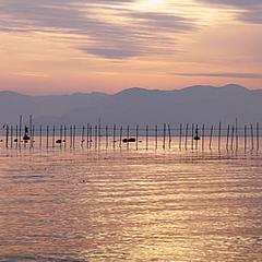 ひとり旅プラン〜びわ湖畔で過ごす至福のひととき
