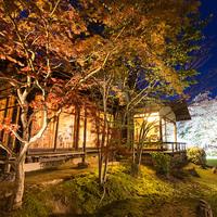 【ゴールデンウィーク限定】庭園に佇む隠れ家レストランJusenで創作和会席を食す。中央館で過ごすGW