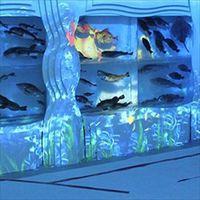氷の水族館&シャークミュージアム入場券付 【海鮮しゃぶしゃぶ膳】