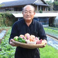 【春夏旅セール】【四季の味】自家農園の採れたて野菜&料理長の日替わりメニュー♪