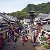 【テーマパーク付】日光江戸村の入村券付!食事は和洋中食べ放題プラン