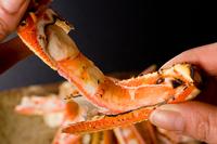 ◇◆魚介の舟盛も味わえるカニフルコース◆◇で丹後の冬満喫♪