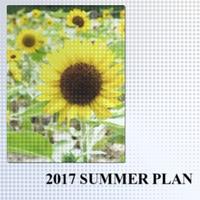 2017 SUMMER PLAN