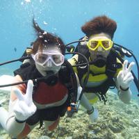 【青の洞窟体験ダイビングツアー】沖縄で人気のスポットでブルーホールを体感!