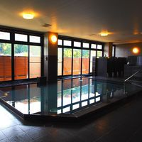 【スタンダード】歴史ある温泉と西条の恵みを満喫できる1泊2食の温泉満喫プラン