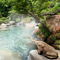 【基本プラン】下呂富士の森に佇む登録有形文化財の木造3階建ての宿に泊る。昭和初期の温泉旅館情緒。