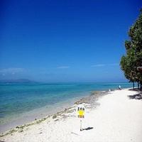 【連泊プラン】滞在中1回 沖縄の原風景が残る竹富島で水牛車観光&のんびりサイクリング付♪