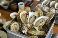 【1泊ランチ付きプラン】牡蠣のカンカン焼たらふくランチ付きプラン