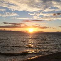 【直前割】これぞ南知多の海鮮料理!伊勢湾の眺望と美食を味わう!【スタンダード】