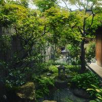 【朝食付き】1-2名様用 広い奥の庭が見渡せる、縁側付きのお部屋。西陣の町家を満喫。