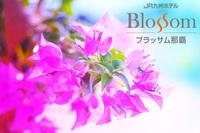 【お日にち・低層階限定】 うりずん沖縄 SPRING SPECIAL (朝食付き)