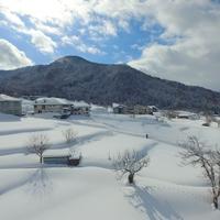 【リフト券付】野沢温泉スキー場 リフト1日券付き◆天然のパウダースノーでスキー&ボードで遊ぼう〜