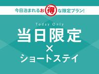 ☆★当日限定★☆ショートステイ(18時IN・9時OUT)〜軽朝食付き・カレー始めました♪〜