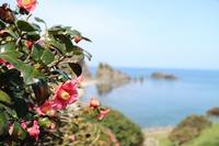 【 海 】 美しい椿と海を眺めるコテージ