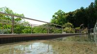 ◆【さき楽60】60日前の予約がお得!ディナービュッフェ&温泉を満喫〜つま恋スタンダードプラン〜