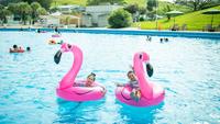プール&アクティビティ付きで夏休みを満喫!【屋外プールデイ券&プレイカード】(2食付き)