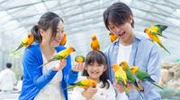 ◆車で15分!掛川花鳥園入園券付きプラン お食事は夕・朝食ともにバイキング