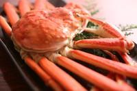 新鮮舟盛とカニフルコース☆で丹後の冬の味覚満載!とろける甘さのカニ刺しや一人一匹付きの茹でガニを堪能
