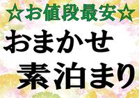【 おまかせ 】素泊まり禁煙 シングル・ツインルーム 単身〜ビジネス〜ファミリーでのご宿泊に!!