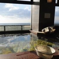 ◆【特選ふぐ祭り】ふぐを満喫、満腹フルコース!〜松コース〜【夕朝食付】