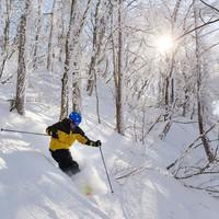 【斑尾山共通リフト券付】パウダースノーを堪能♪朝食バイキング&共通1日券付スキープラン