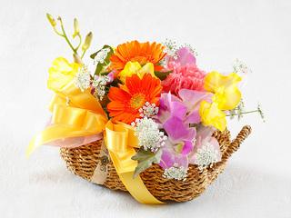 ミラマーレアニバーサリープラン(プランC花)