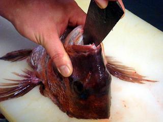 【人気】◎『鯛を食らう!』◎荒焚き、薄造り、釜飯◎夕食は★来島の鯛づくし★生中も半額!と選べる朝食付