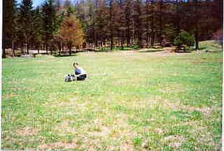 【当館人気】ワンコと一緒に同室お泊り・草原(雪原)を跳回ろうペットプラン