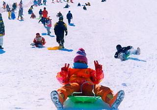 ★【雪遊び】【お先でスノ。】スキー・スノボ【ポイント2倍】1泊2食付★