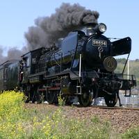 【鉄道ファン歓迎】SL&観光列車見学なら当館へ♪一人旅もOK<球磨川会席>