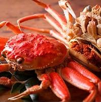 【県内唯一!日本海4種の茹がに食べ尽くしde目利きマスター♪】初めて越前がにを食べる方におススメ!