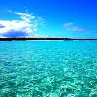 春得 3月が熱い!最大38%オフ・ゆっくり沖繩ステイ!美ら海水族館も近い♪